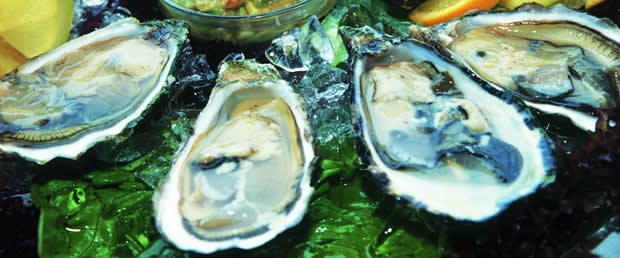 Enjoy some Oysters in Knysna